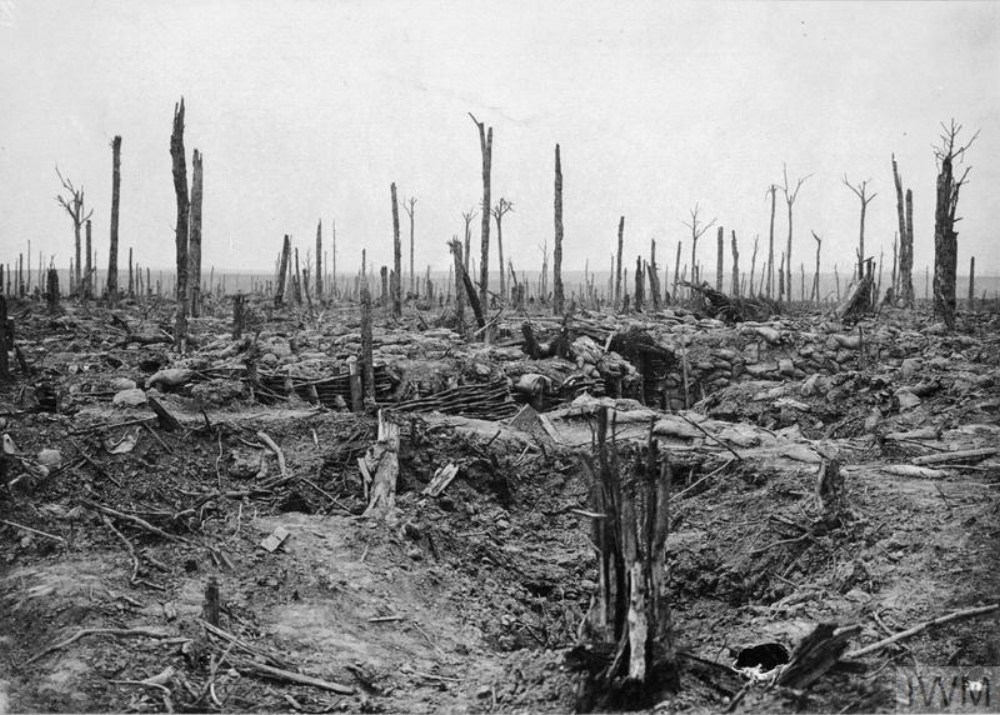 Oosttaverne Wood, including the trenches taken by the British during the Battle of Messines Ridge, June 11 1917