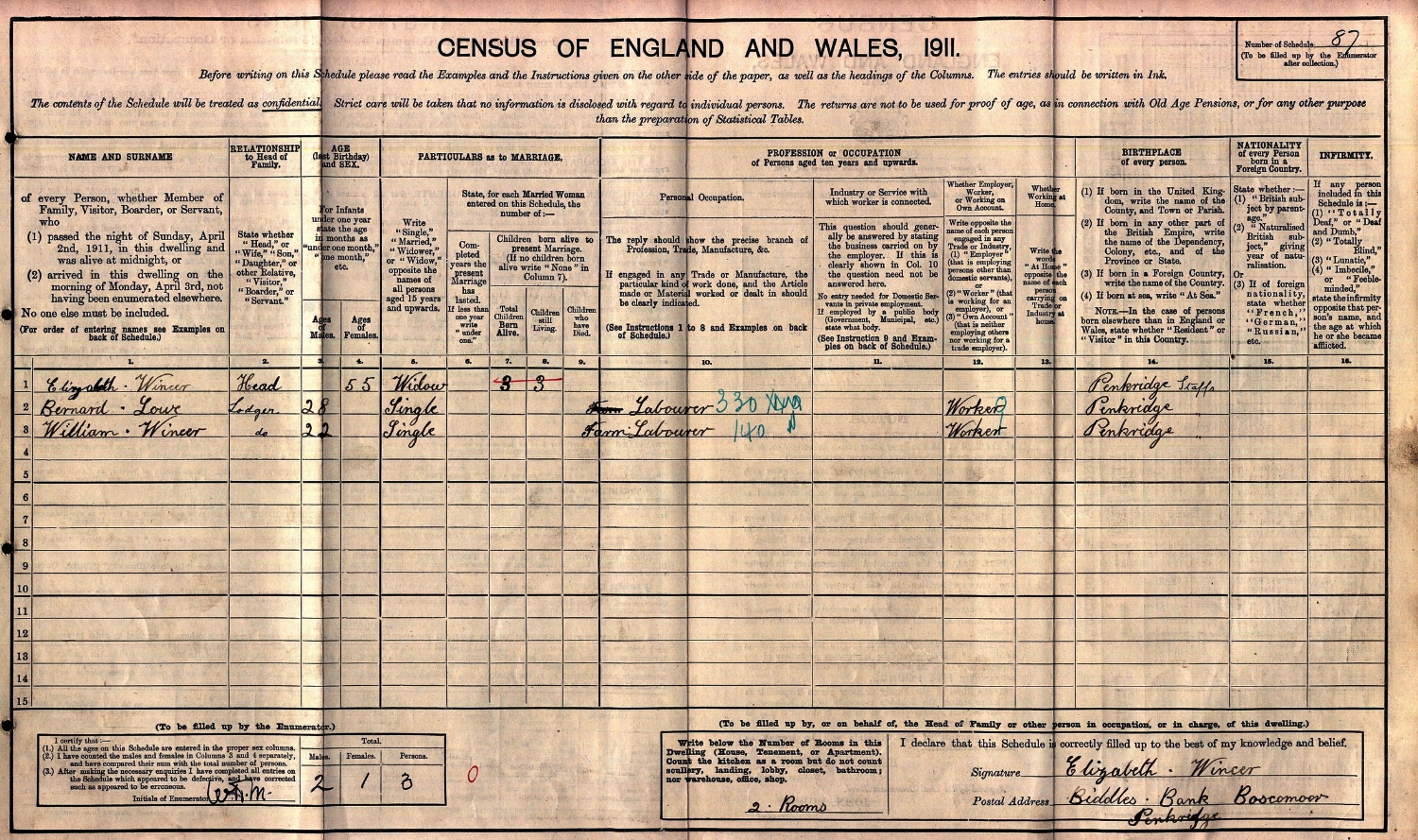Extract from the 1911 census for Elizabeth Wincer