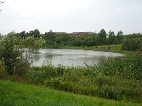 kingswood lake.JPG