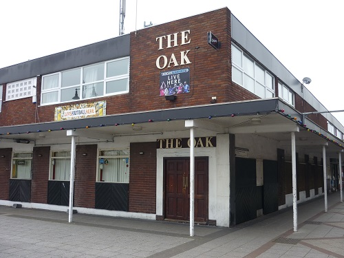 the oak.JPG