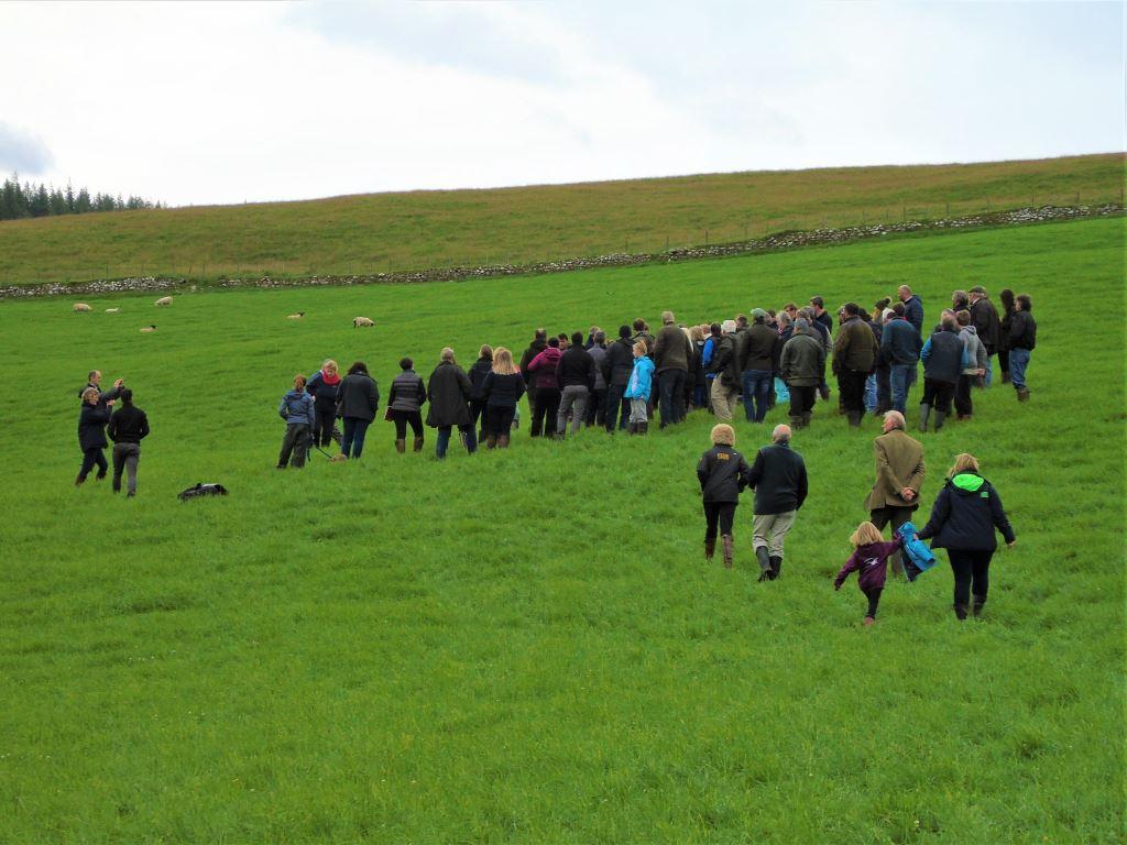 Farm walk for the Moredun event
