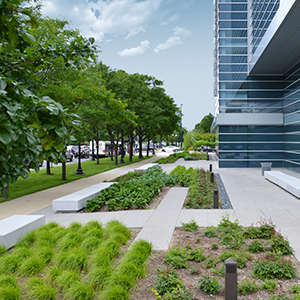 Landscape Architecture - TERRA Engineering, Ltd. (TERRA) helps shape the spaces we inhabit by providing Landscape Architecture design services from conceptual planning through construction closeout.