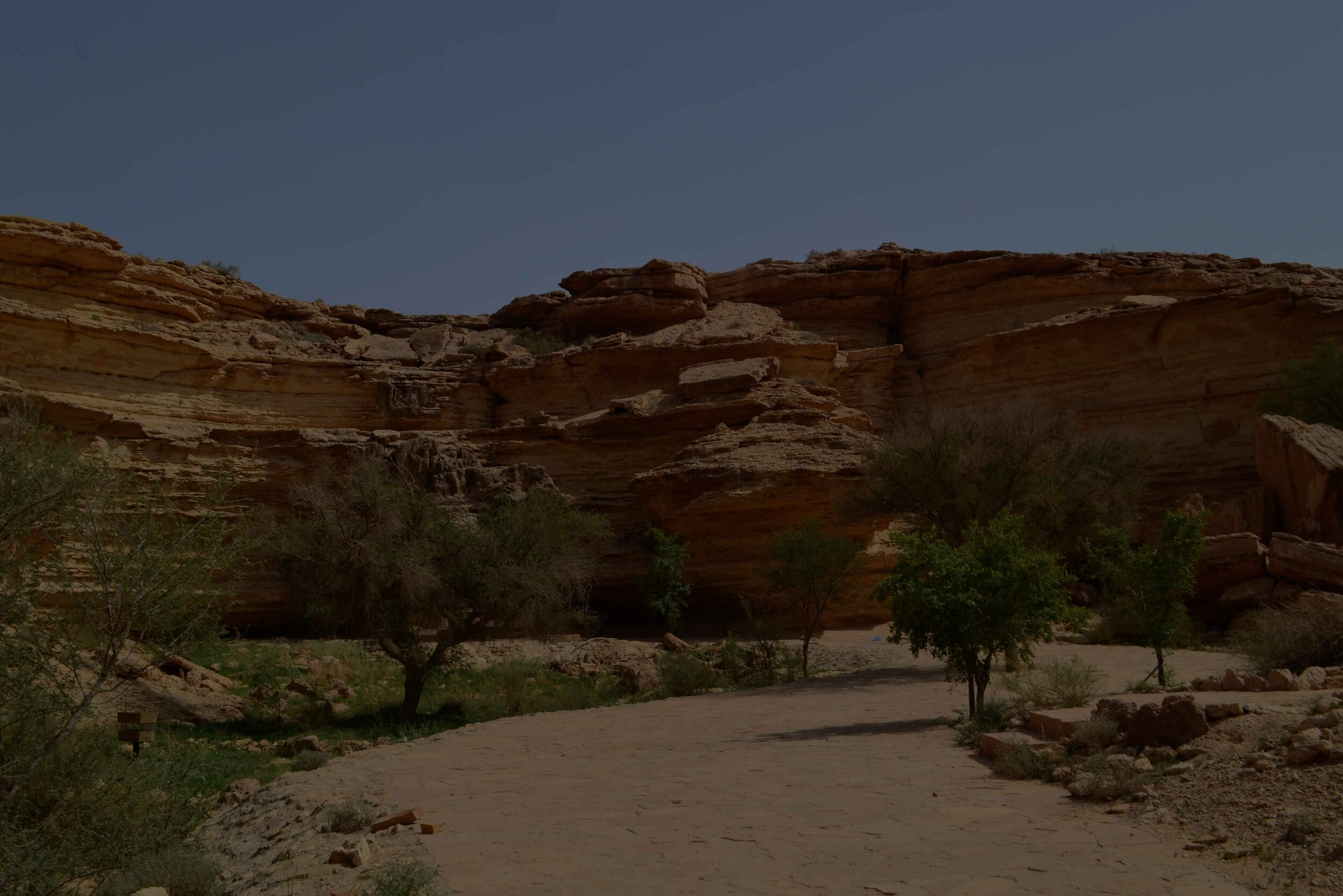 KSA-National-Parks-Master-Plan-1.jpg