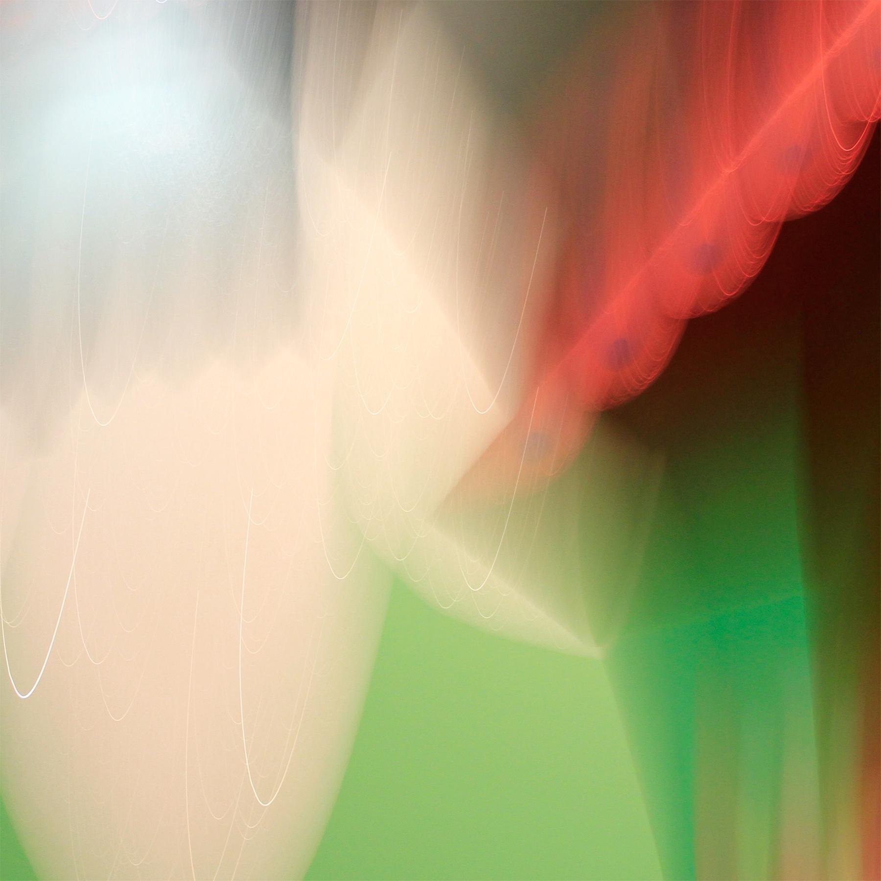 Untitled-1_small.jpg