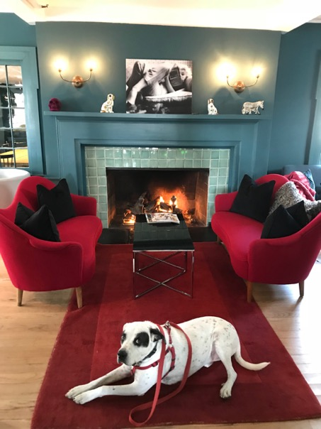 SAMSAS SOFAS Our favorite spot in front of the fire flanked by two Samsas sofas designed by Carl Malmsten in 1960.