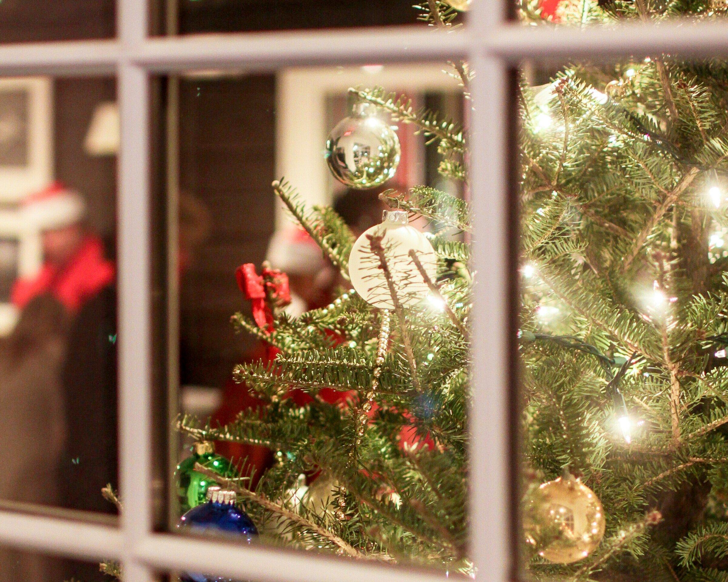 Dec 7 - The Maidstone Traditional Tree Lighting Ceremony