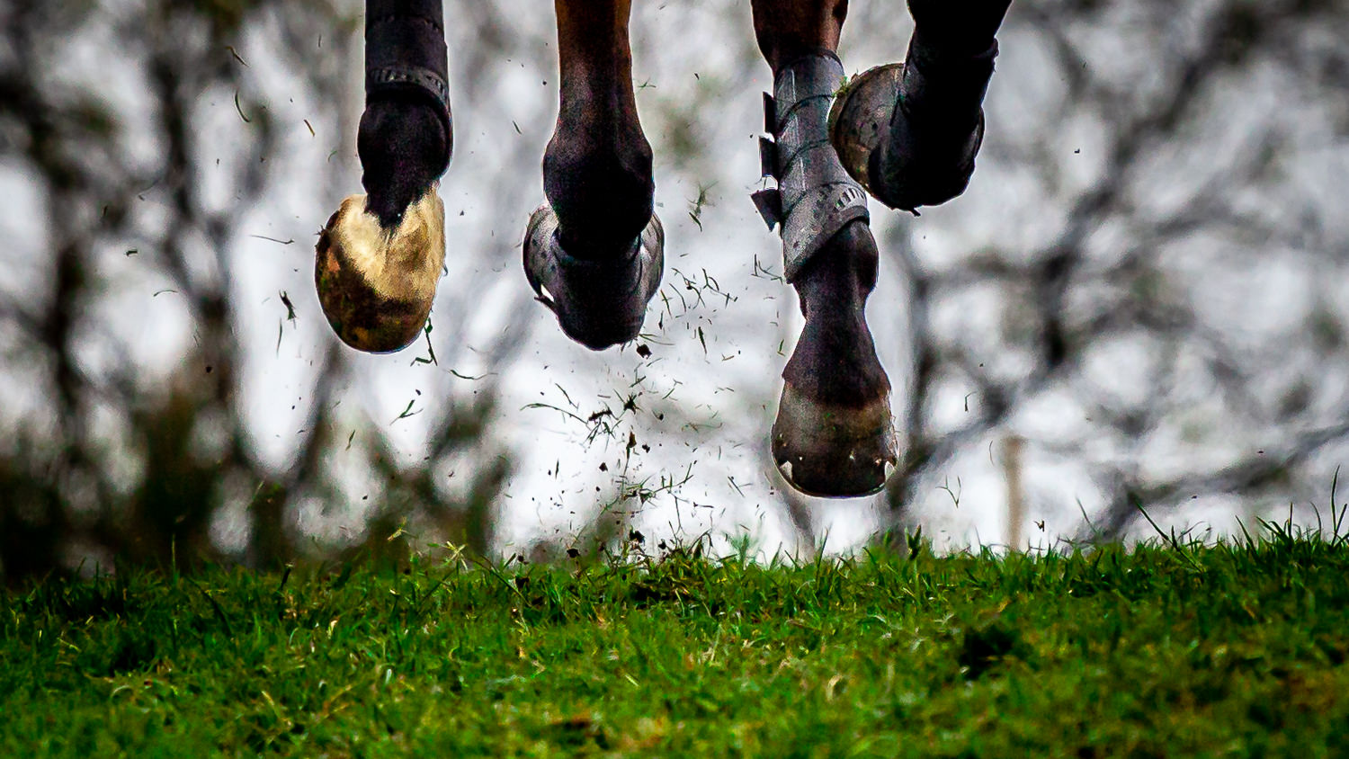 Flying horse hooves at the Rockingham Horse Trials 2019