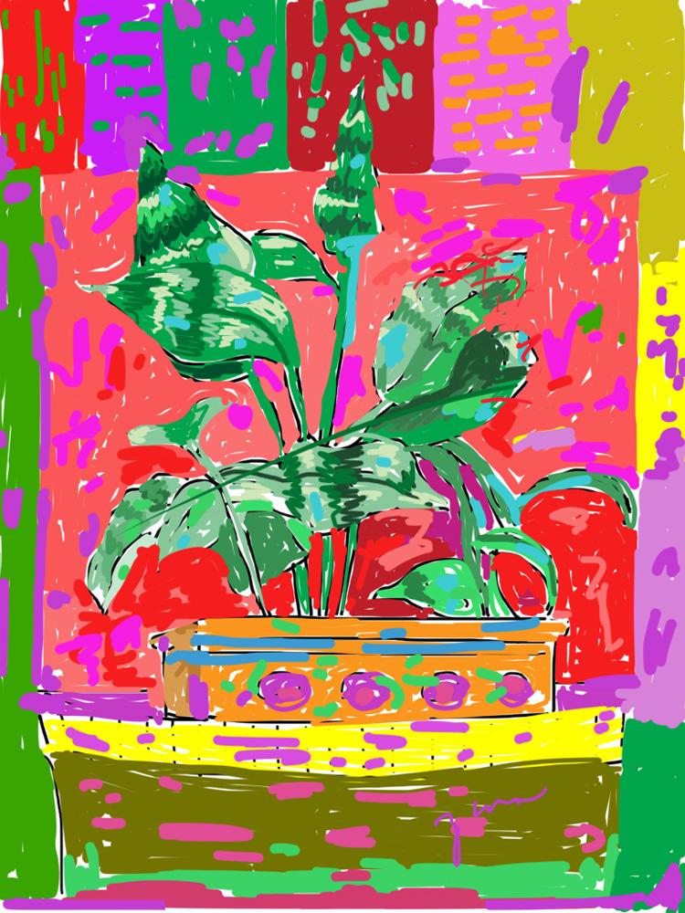 Margie's Plant