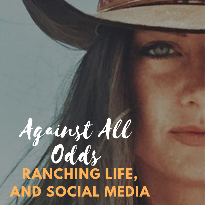 Ranching Life in South Texas