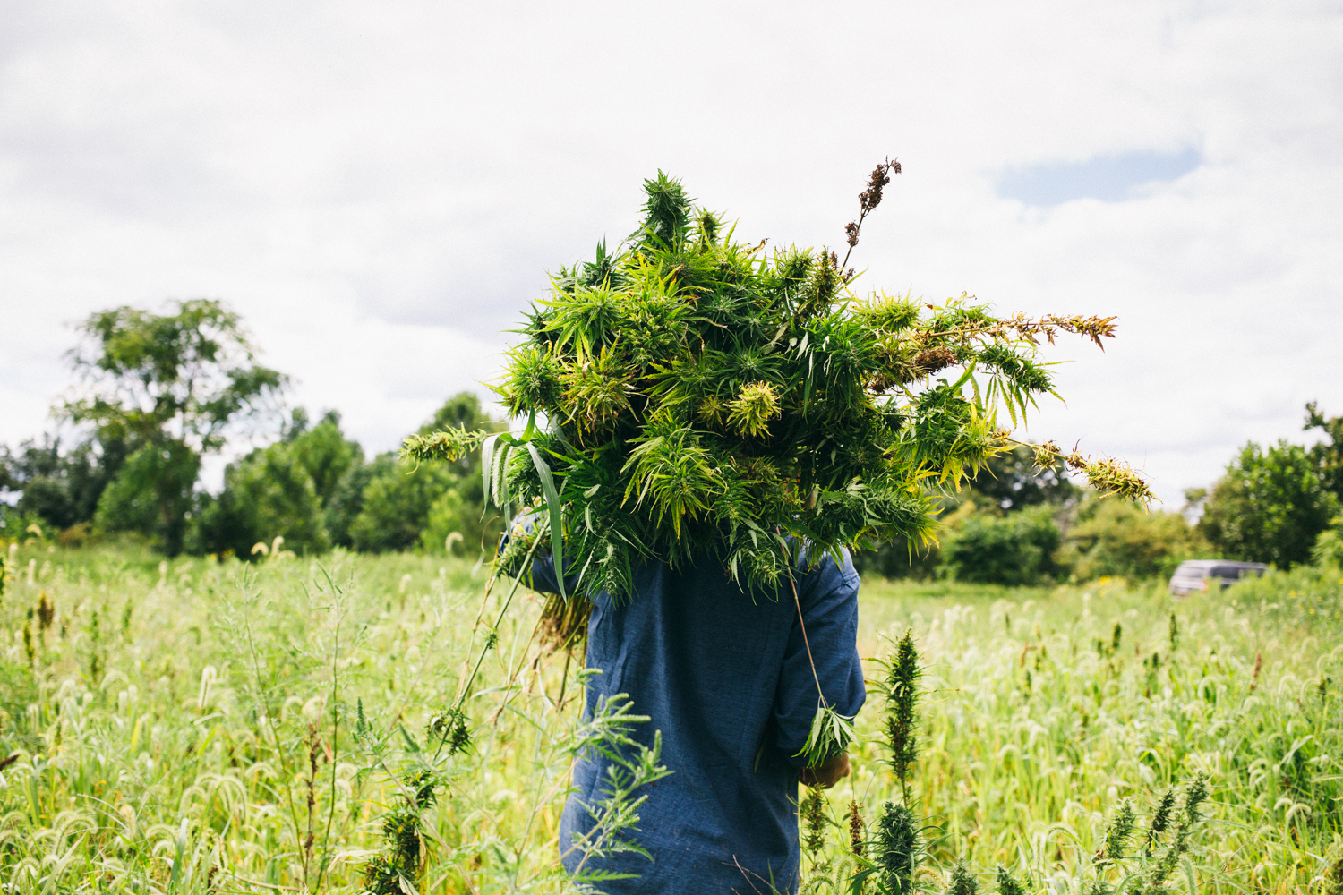 Hemp_For_Liberty_Stills_D.Hedden-14.jpg