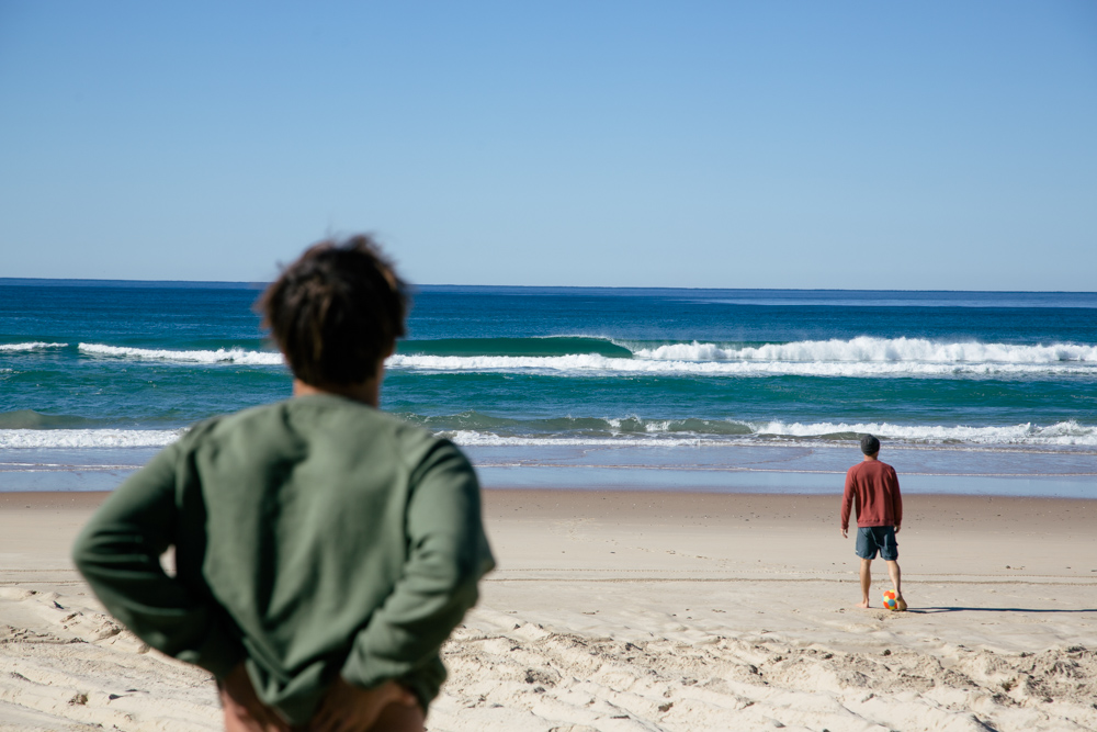 Australia_Mollusk_proofs_2014-62.jpg