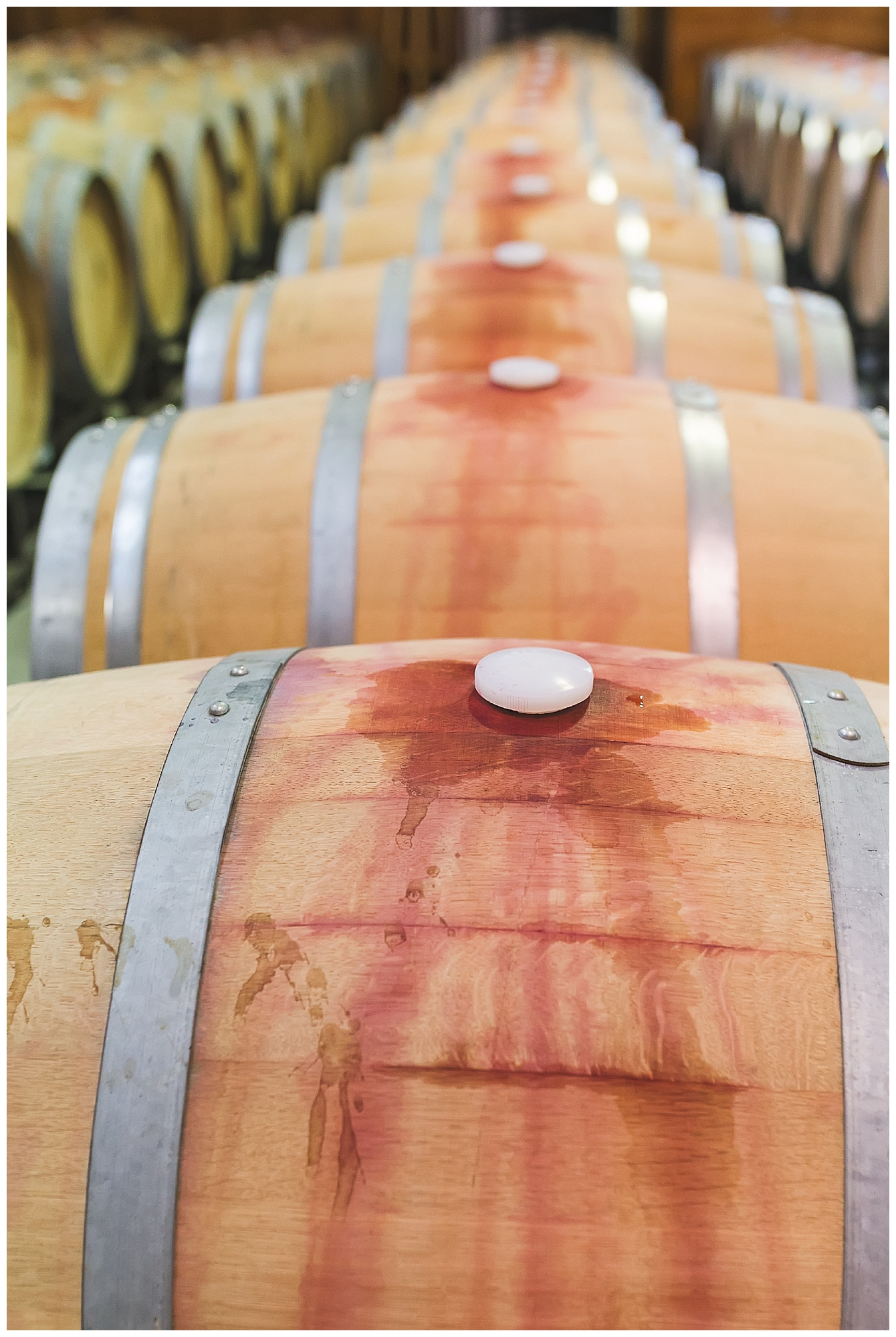 New Kent Winery Virginia Winery