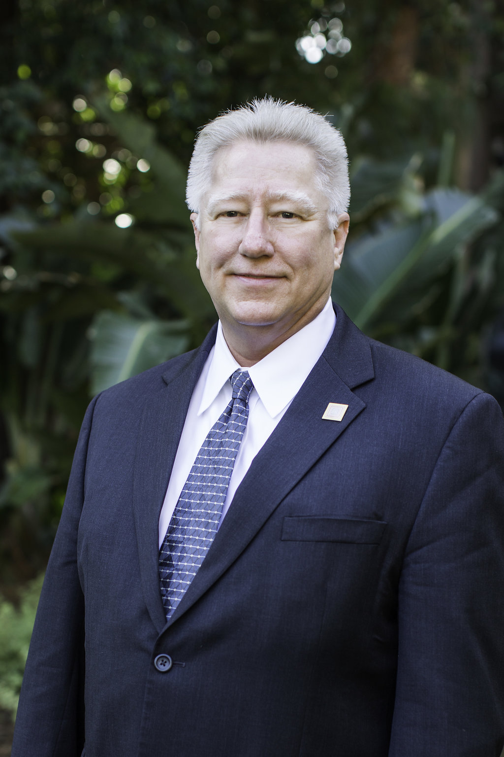 ROBERT LOLL  LAWYER GENERAL COUNSEL