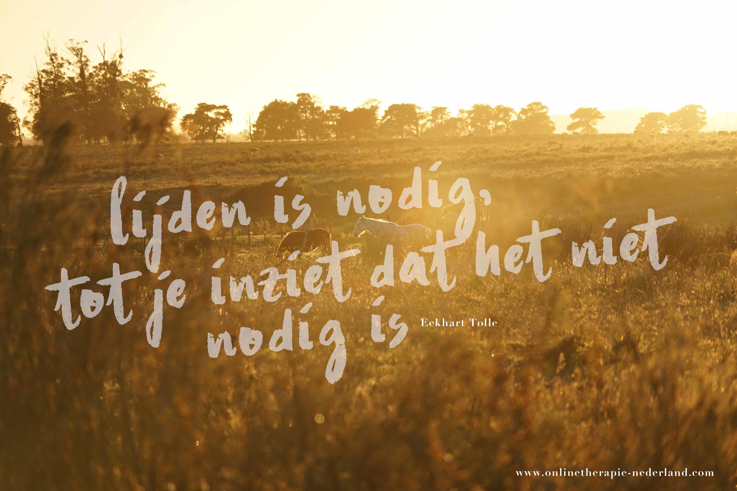 onlinetherapie-nederland.jpg