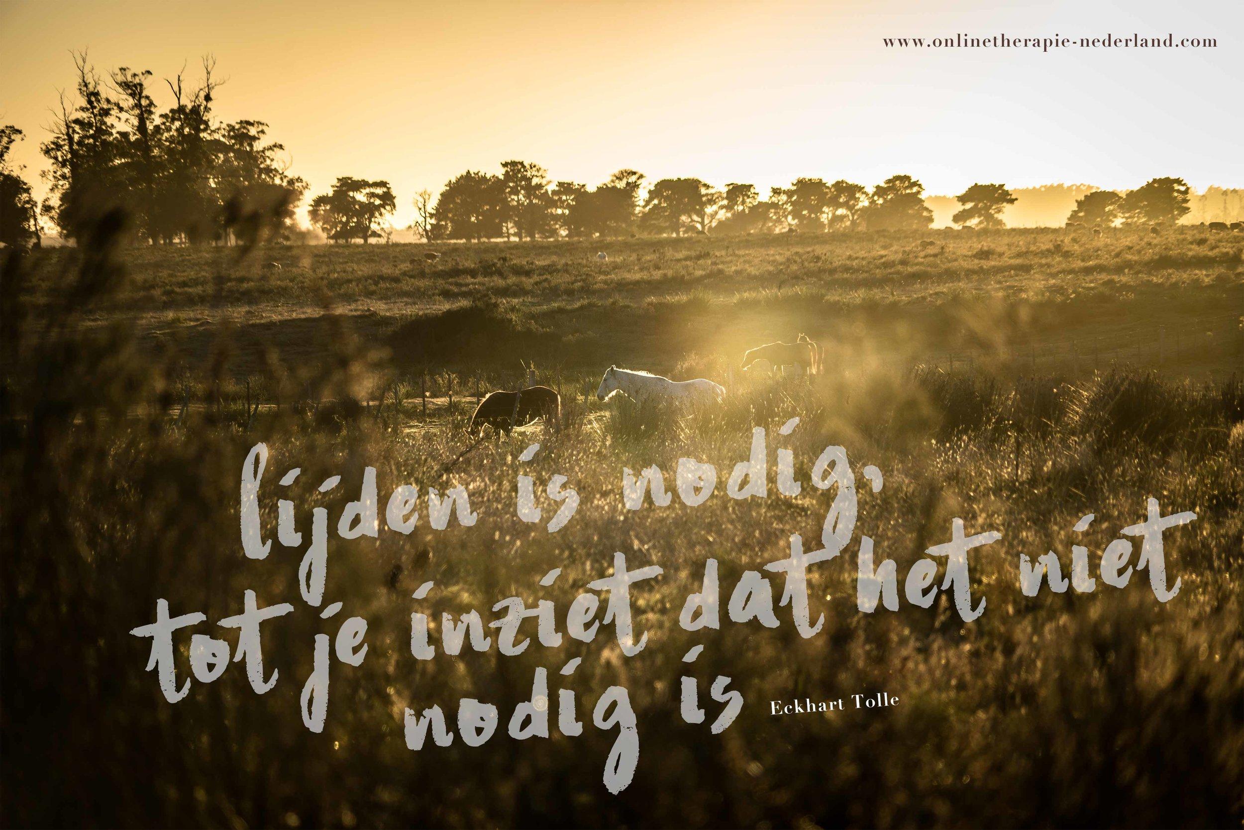 onlinetherapie-nederland-01.jpg