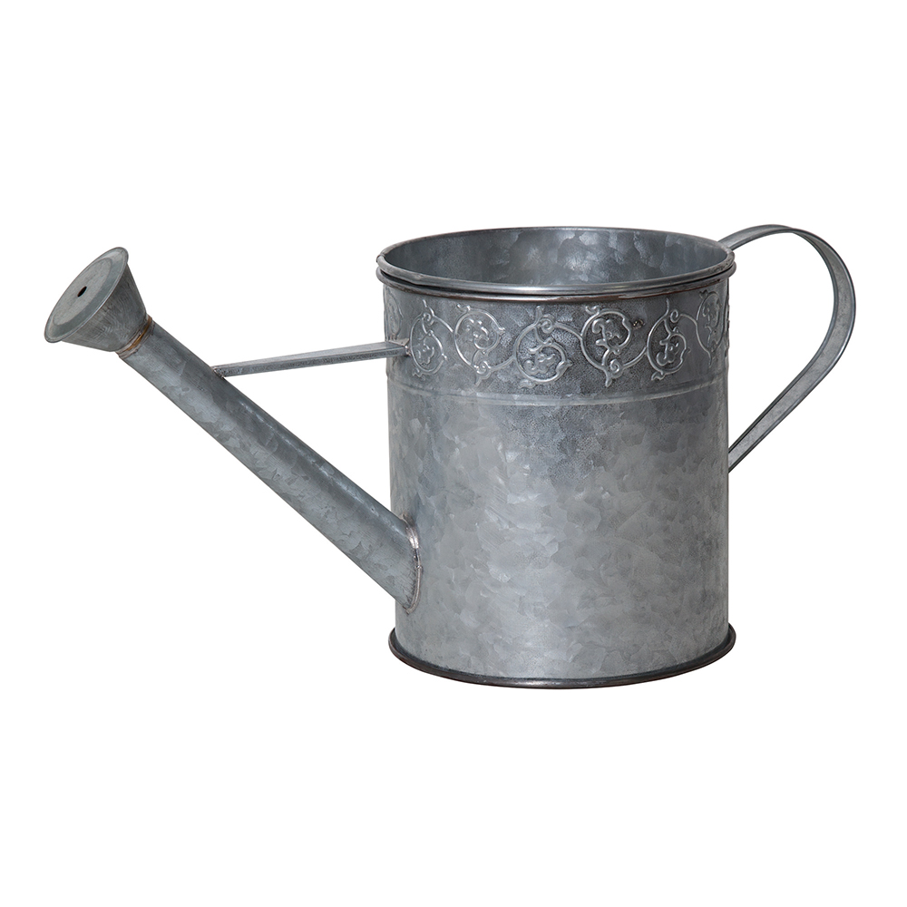 Watering Can Spitter & Planter