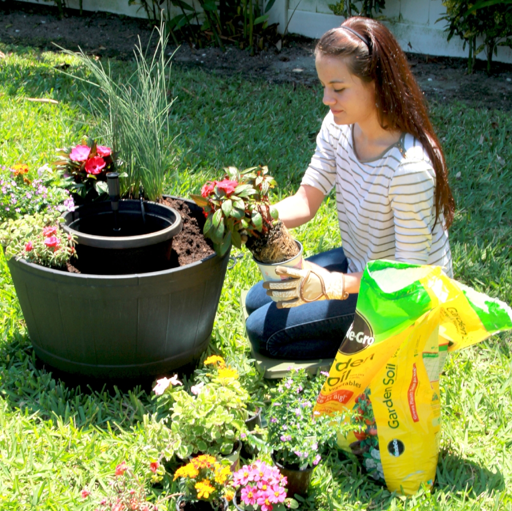 Step 4 - Begin to plant around the water reservoir using the plants and soil. You want to keep the reservoir in place while planting to help maintain the shape of the soil.