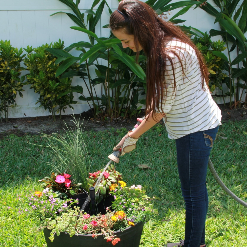 Step 5 - Add water to the reservoir, while doing this you can also water your new plants.