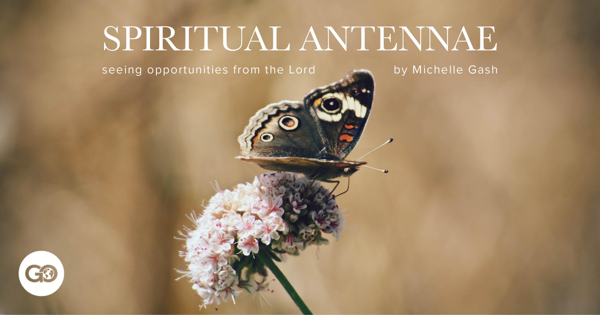 Staff Devotion Spiritual Antennae.jpg