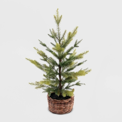 $25 for your very own not-so Charlie Brown tree