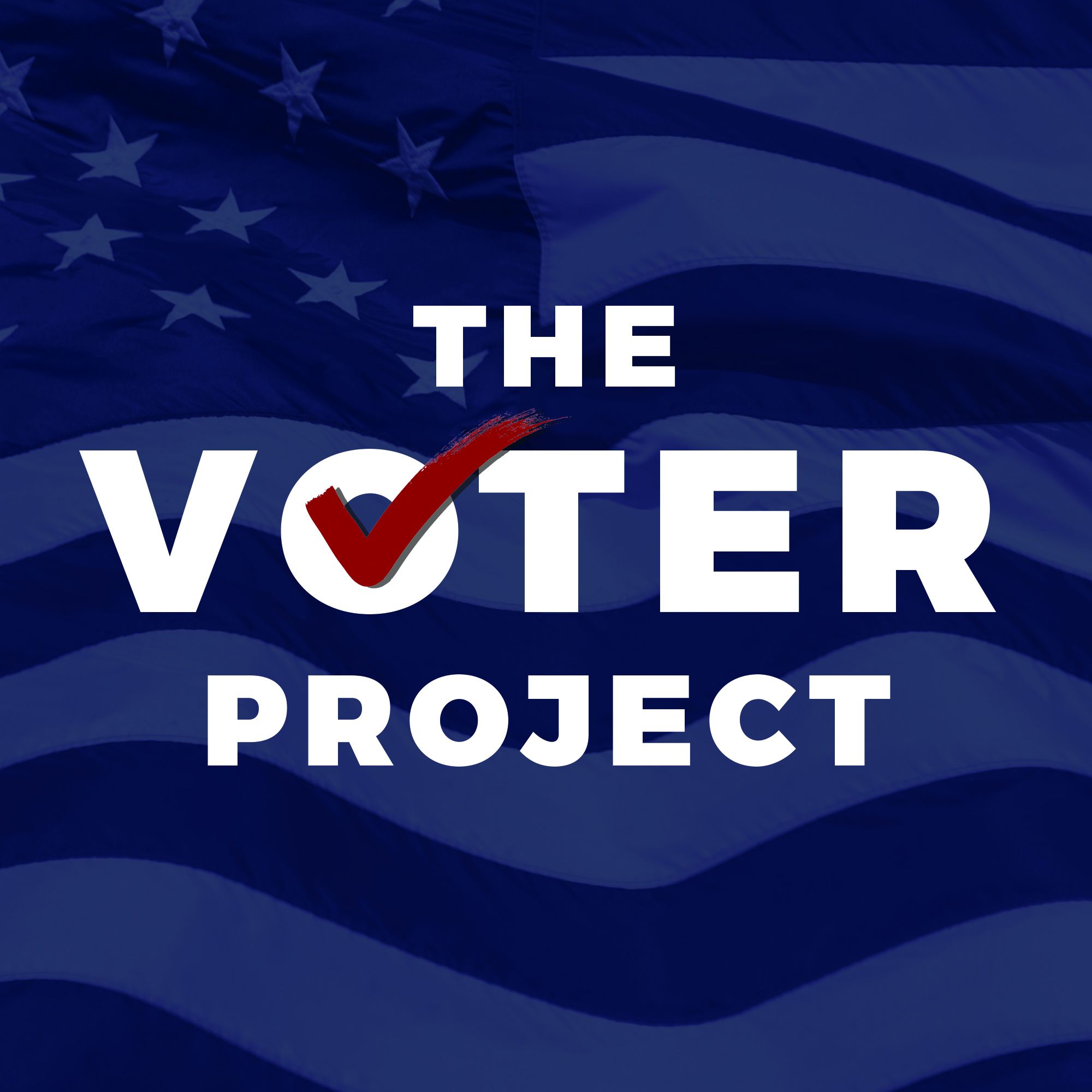 The Voter Project.jpg