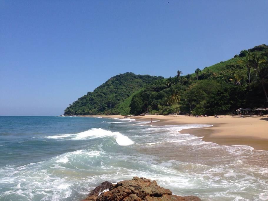 jungle beach.jpg