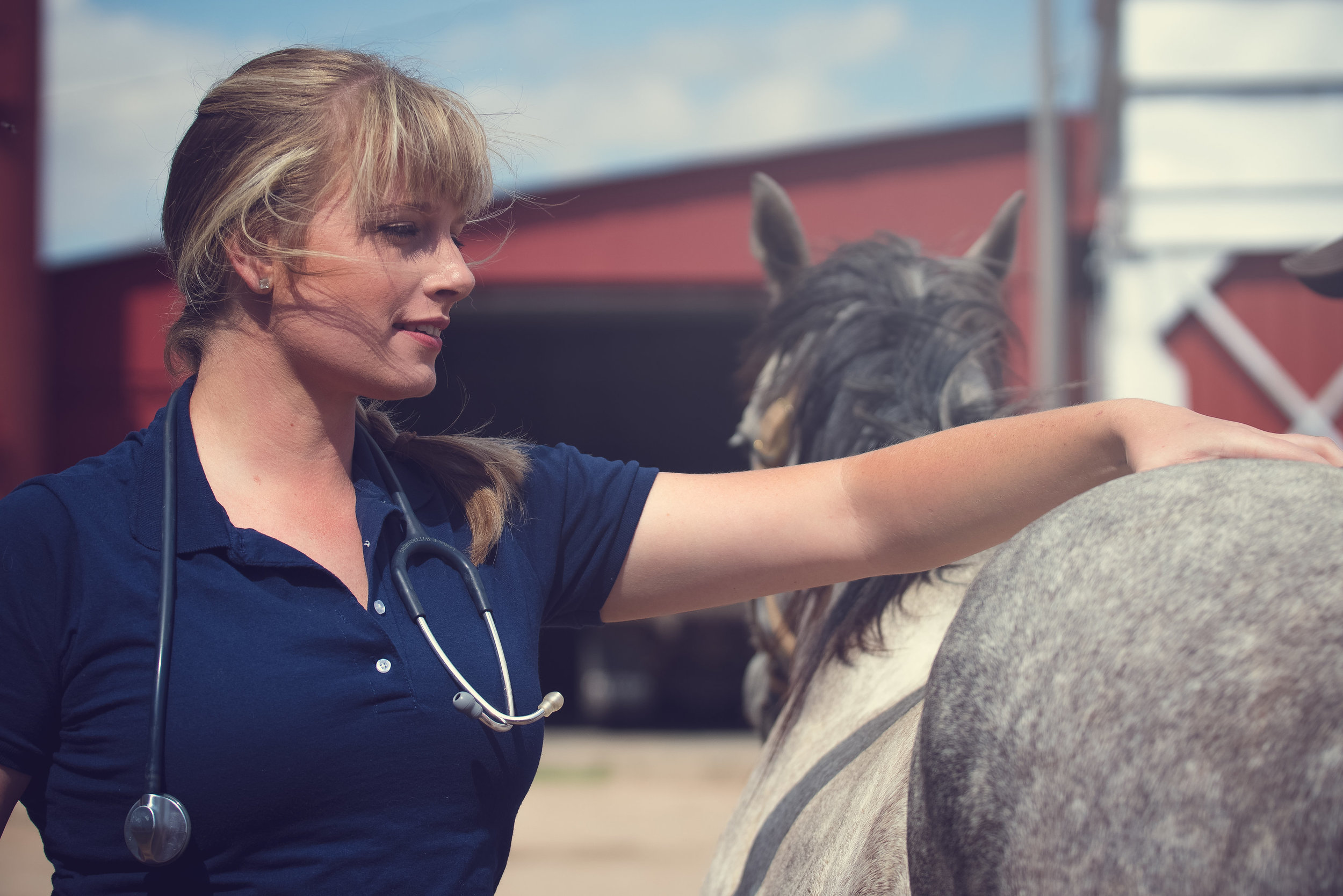 Emergency References - Bledsoe Mobile Vet does not offer 24-hour emergency coverage at this time. For immediate life-threatening emergencies outside of our regular business hours, we recommend the following emergency large animal care providers in our area: