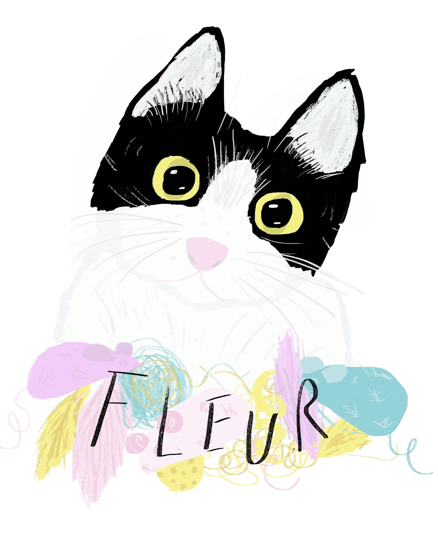 Portrait of Fleur the cat.