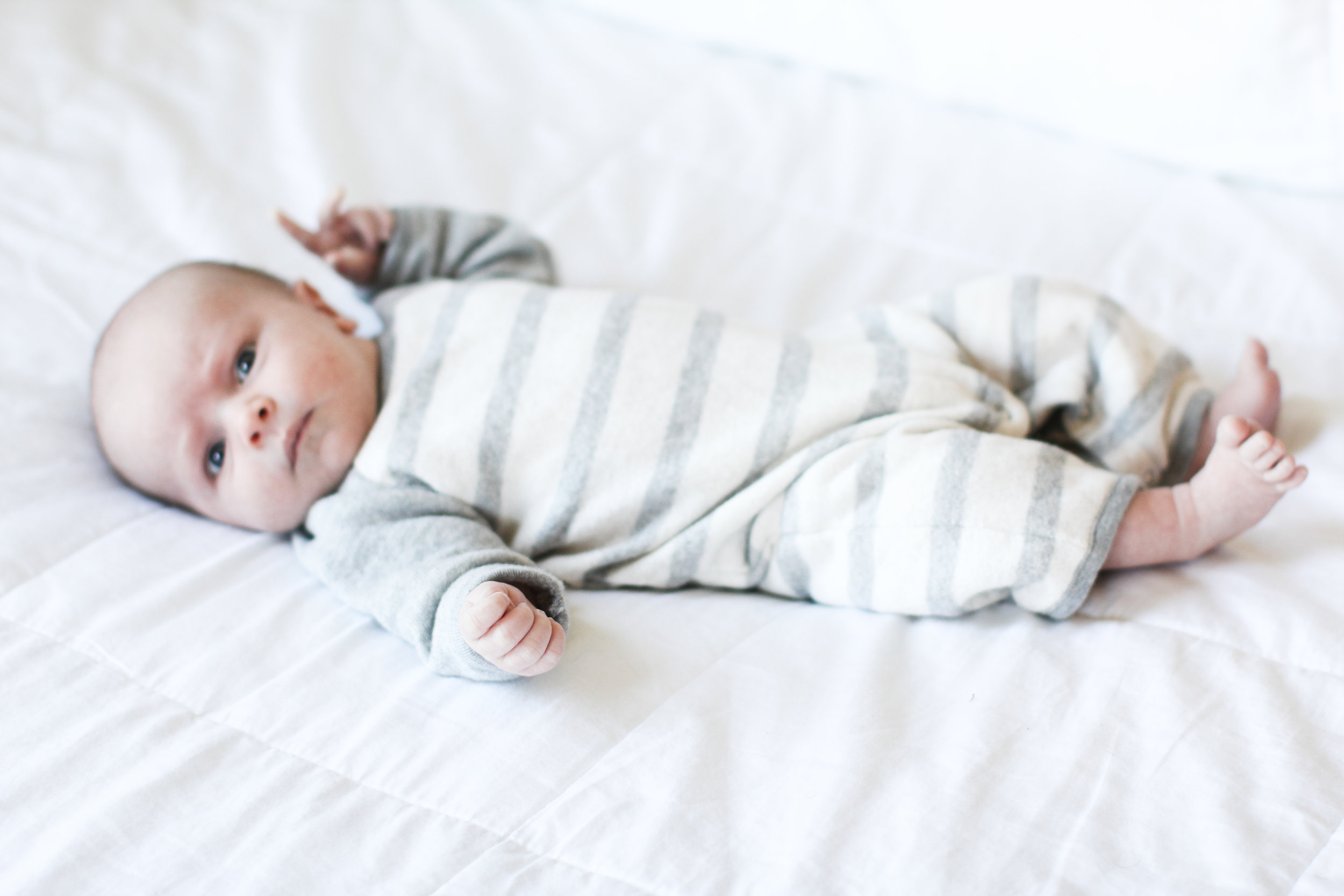 Charlie, 2 week - photo by  Allie Beckwith