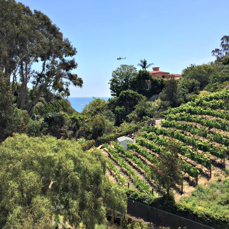 malibu-inland-vineyard-house.jpg