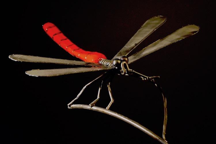 Dragonfly   Mixed Media   Sculpture