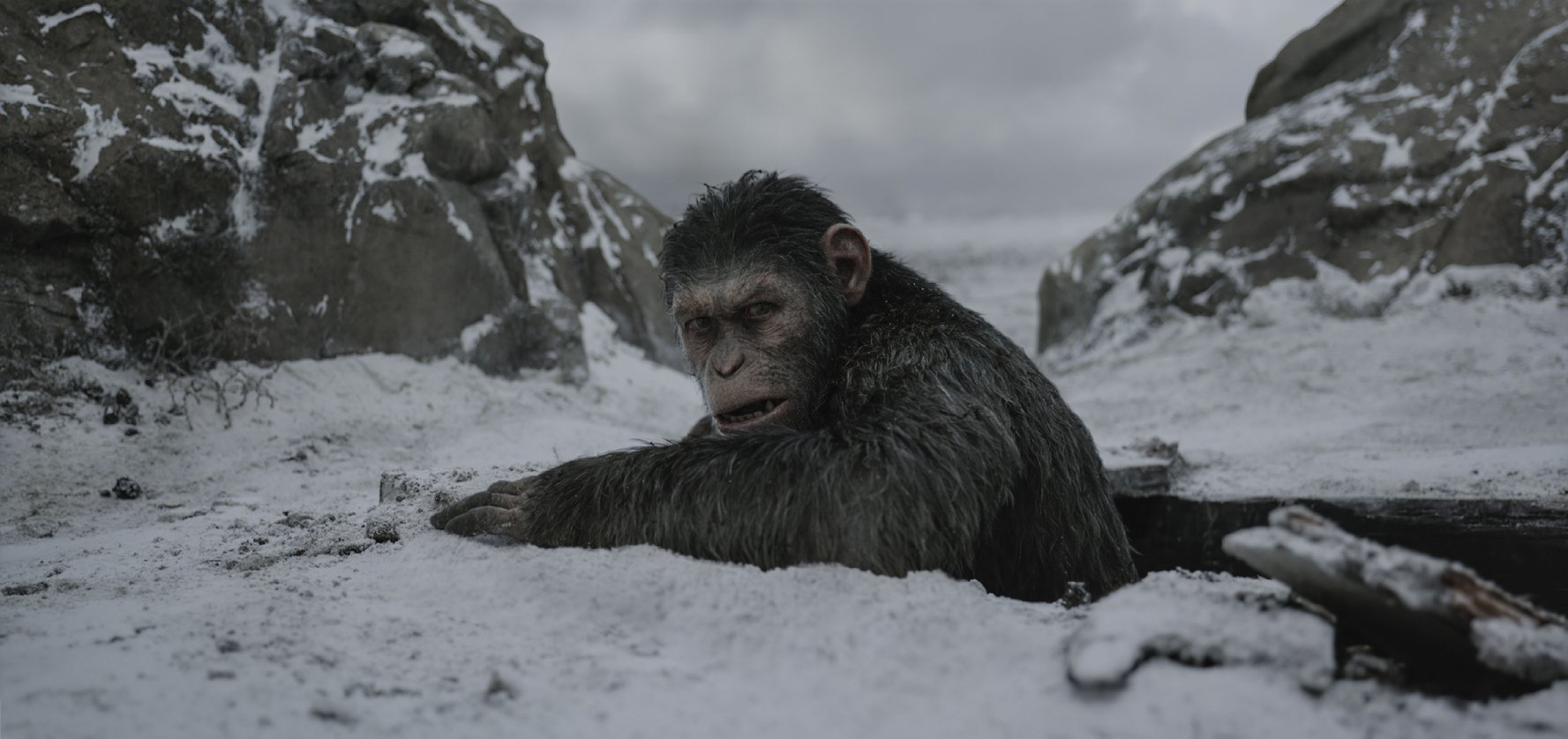9. WAR FOR THE PLANET OF THE APES | Directed by Matt Reeves | Release Date: July 14, 2017   People expected a summer action movie blockbuster and, instead, for this  War , director Matt Reeves has delivered something unforgettable and truly special – a blistering, dark, visceral rumination on war, loyalty, and sacrifice. For some this will be grim, dark, and unrelenting. You will want a gulp of fresh air afterwards, and maybe sit quietly with a beverage of your choice and not think about all of this for a good, long while.  But this is one of 2017's best films, though it may offer minimal light and fleeting levity. Reeves delivers an experience full of gripping, knuckle-white potency, with a breathtaking risk of violence and danger in and around every scene. As Caesar, Andy Serkis' motion-capture work is extraordinary, and he delivers a performance that rivals the best work of any actor we watched all year.  War is not warm. Seldom, if ever, is it kind. Heroism can exist in challenging and unconscionable environments.  War for the Planet of the Apes  dutifully ends this new  Planet of the Apes  trilogy in a strong and demanding way. This is a compelling film, unforgettable and cold to the touch. However, just like a character in the film who allows themselves to shed a single, solitary tear at the film's conclusion, this is a journey and finale I am thrilled to have taken.