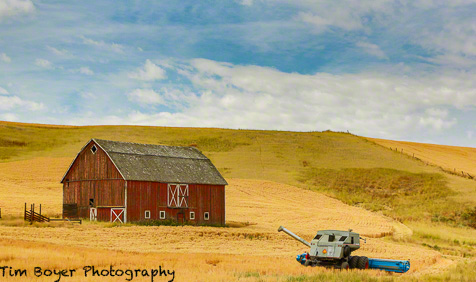 My first stop for the harvest workshop, a red barn and a harvester, blue sky and some clouds!  What more can you ask for.