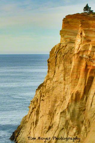 Cape Kiwanda sandstone.