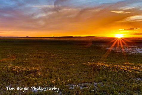 Sunset on the high desert near Malheur Lake.