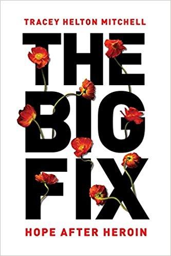 the-big-fix.jpg