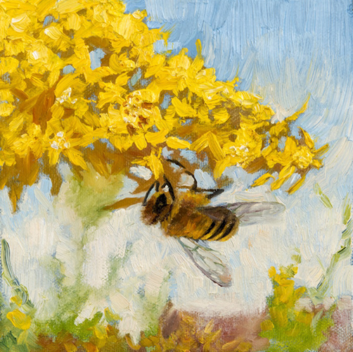 non-native-vignette-apis-mellifera-honey-bee-622-x-622-oil-on-canvas-2017.jpg