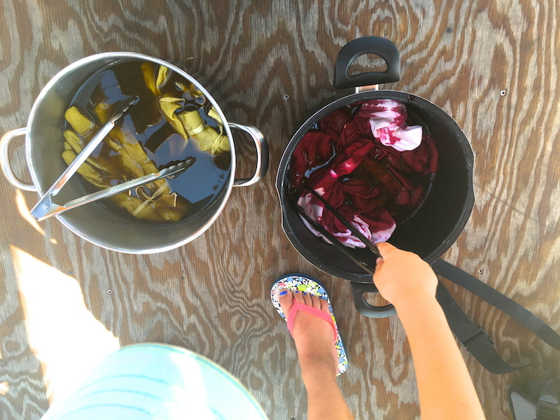 Dyeing With Weeds  w/ Christine Facella