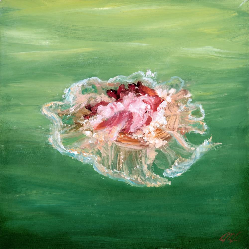 HI RES edit-N&NN-Cephea cephea (cauliflower jellyfish)-Dalrymple-12x12-oil on canvas (2016) copy.jpg