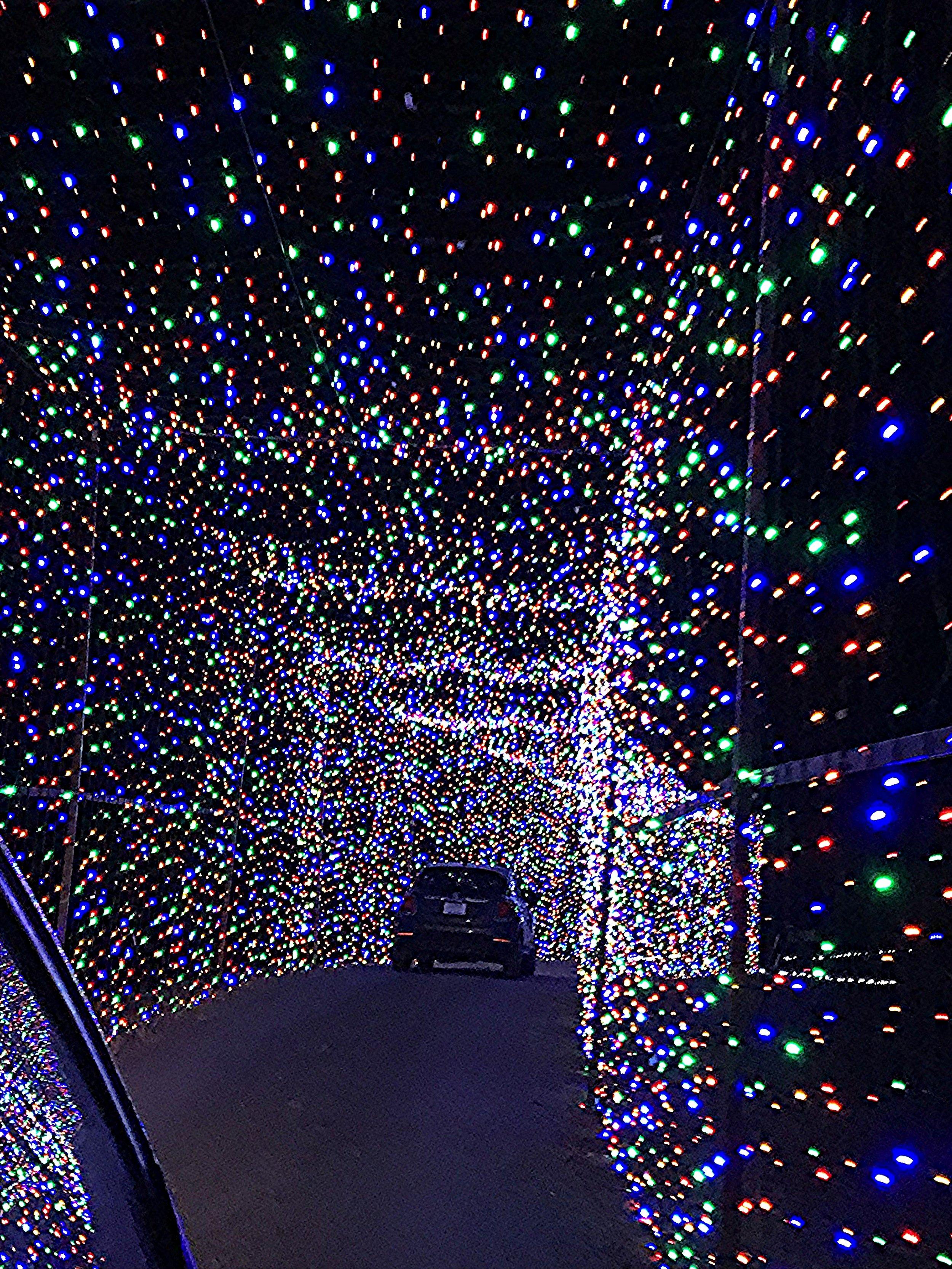 Christmas Light Fest Entry.jpg