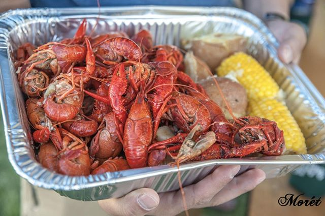 #WeDoAmazing festivals! Join us next weekend for the 2019 Frogtown Crawfish Festival at Woodruff Park.🦐 June 21st & 22nd will be full of crawfish, food, drinks, music, arts and crafts, games, raffles, giveaways and more! 🦐🥨🥤🎶Tickets are on sale now!🎟 📸: Moret Photography . . . #AmazingColumbusGA #WeDoAmazing #ColumbusGA #SouthernLiving #exploregeorgia #foodie #food #dinner #instagood #flatlay #festival #crawfish