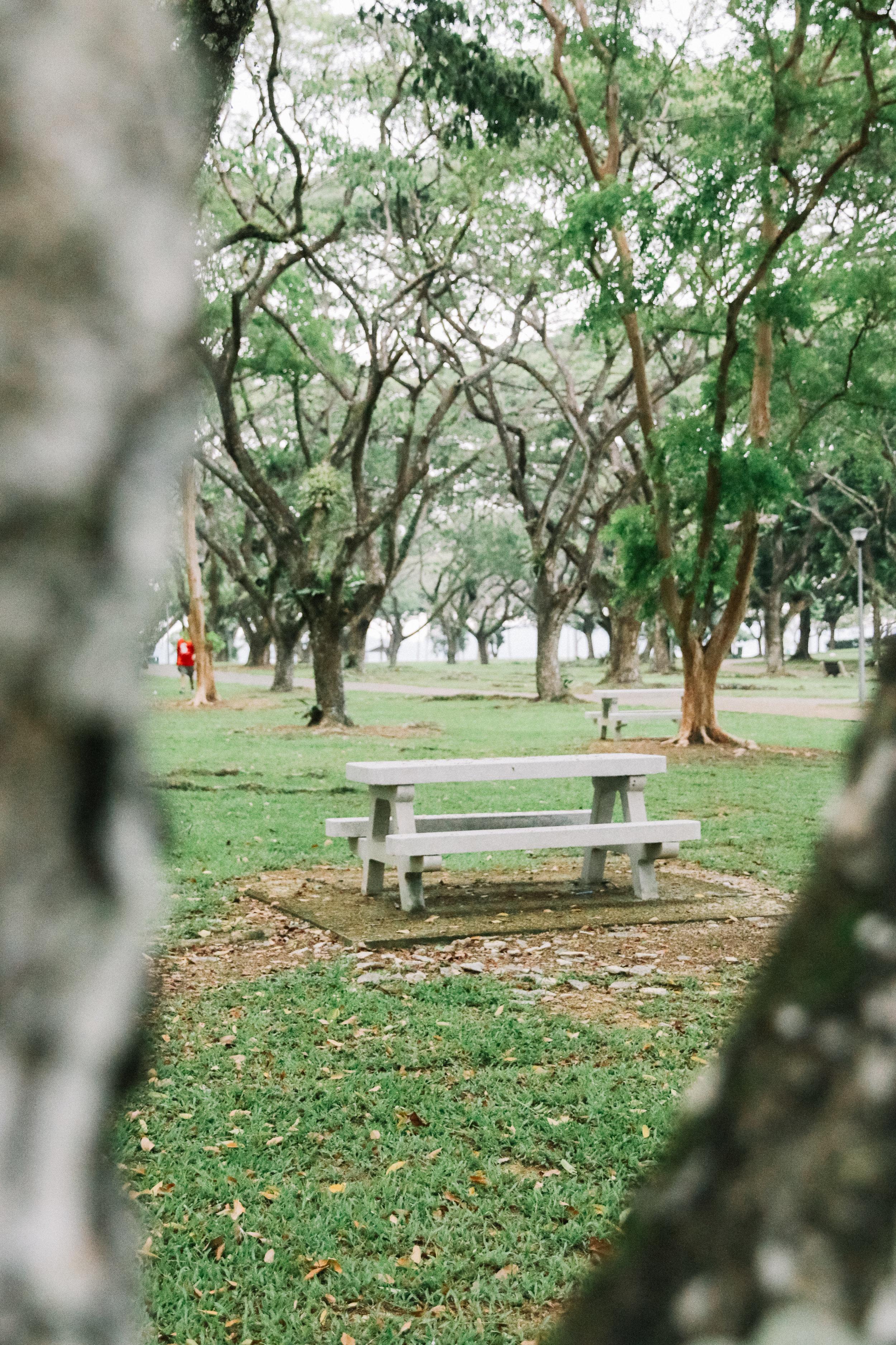 Choosen-22.jpg
