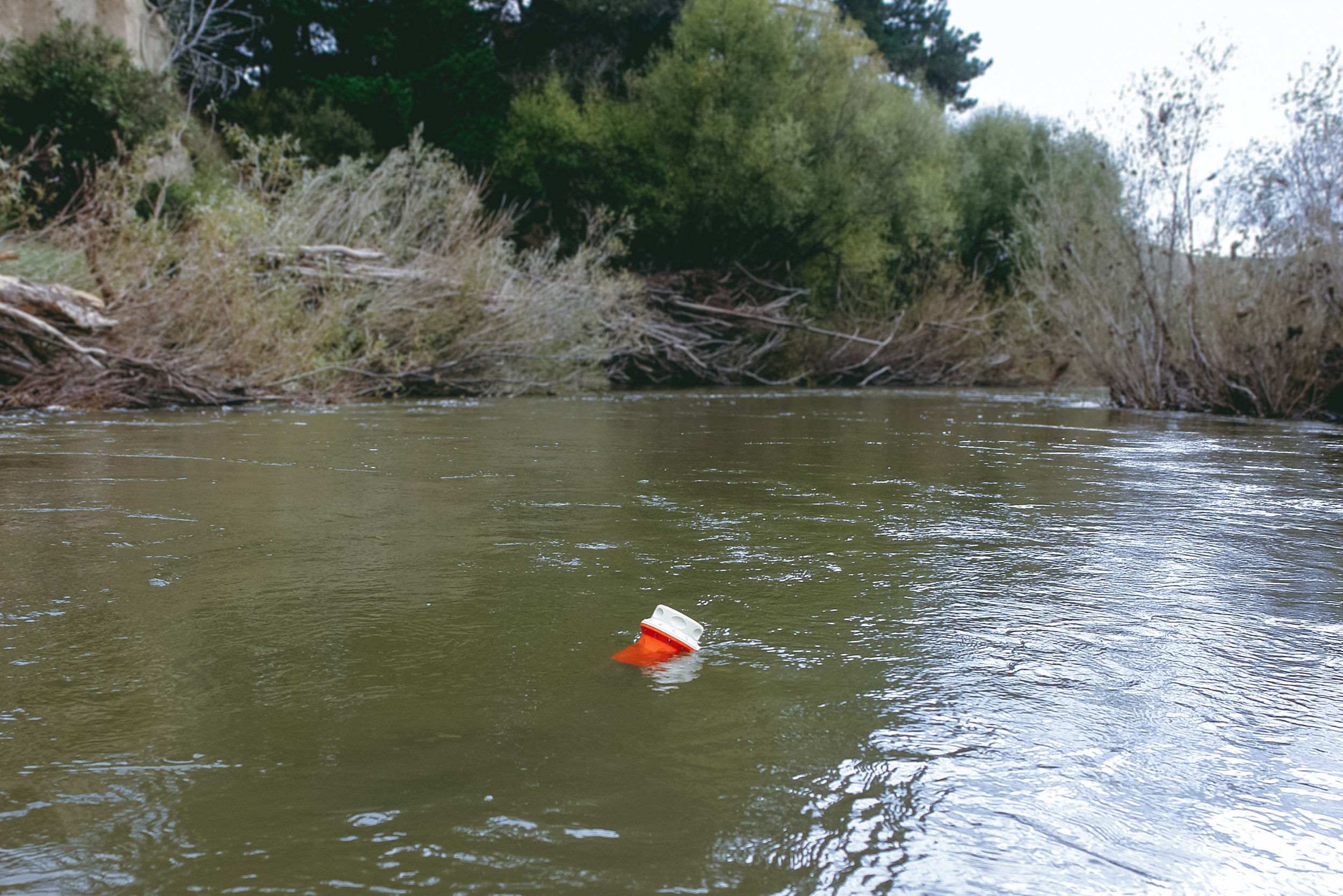 The RiverWatch gathering water quality data in the Pahaoa River, Martinborough