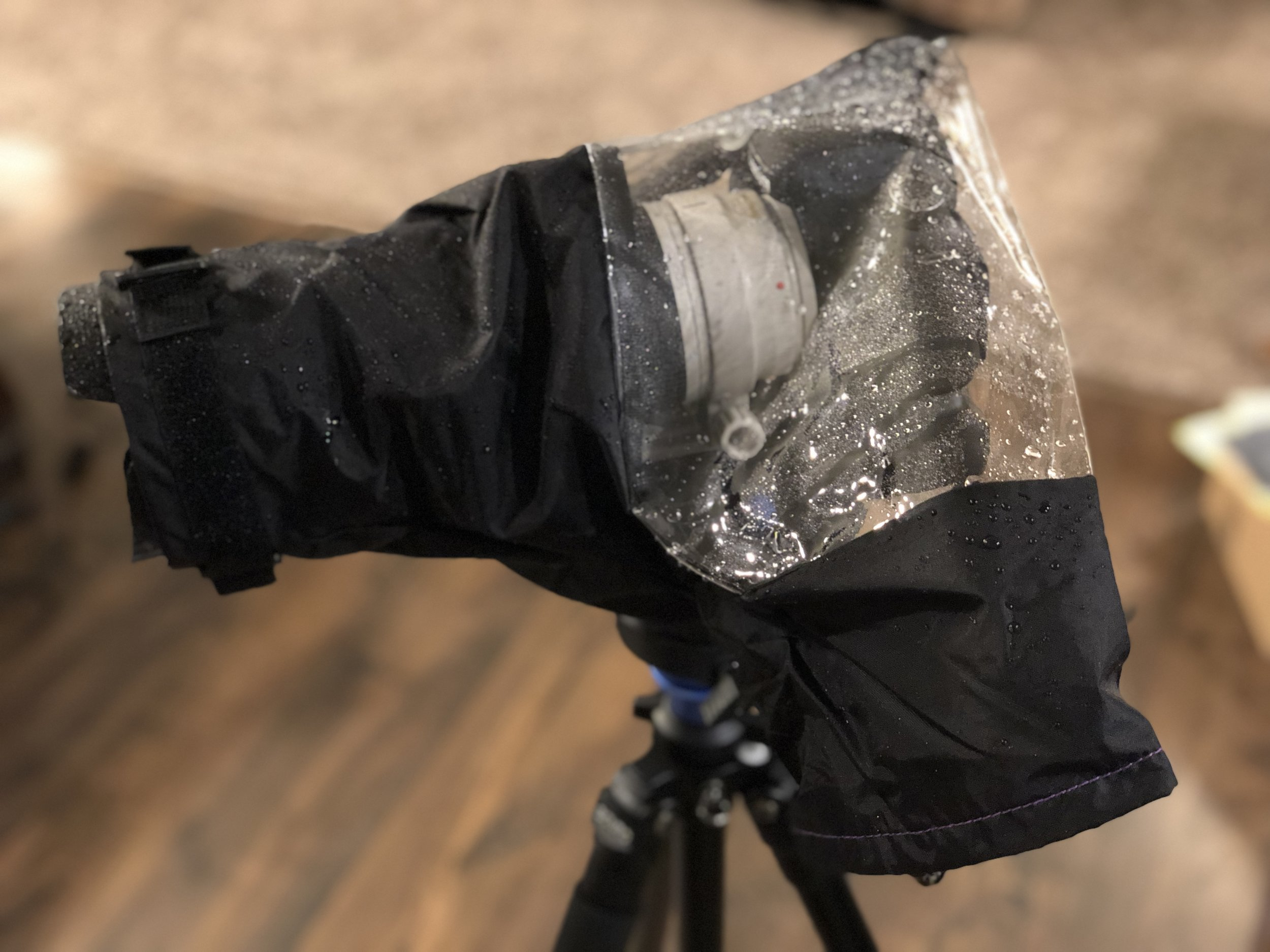 My Canon 80D with 70-200mm f/2.8 and hood