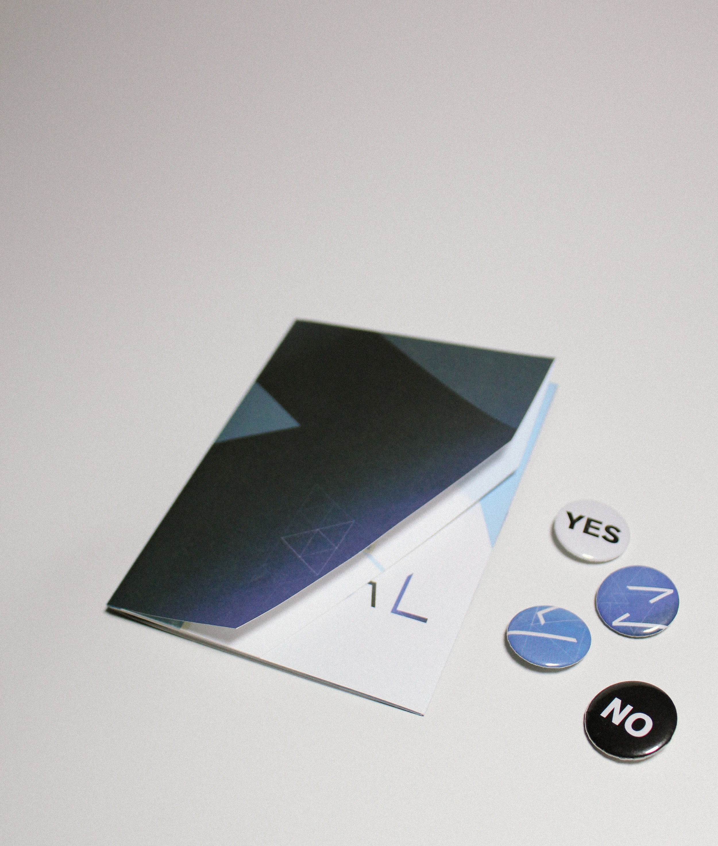 promo brochure and pins.jpg