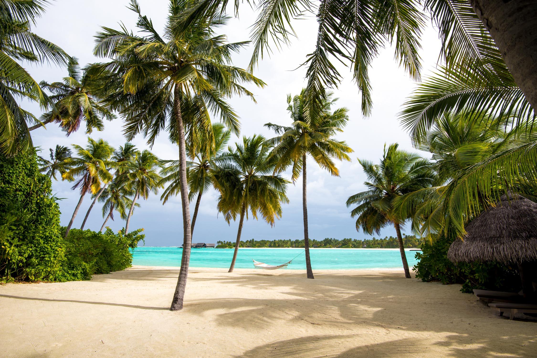 Maldives_Reethi-Rah-101-20170520.jpg