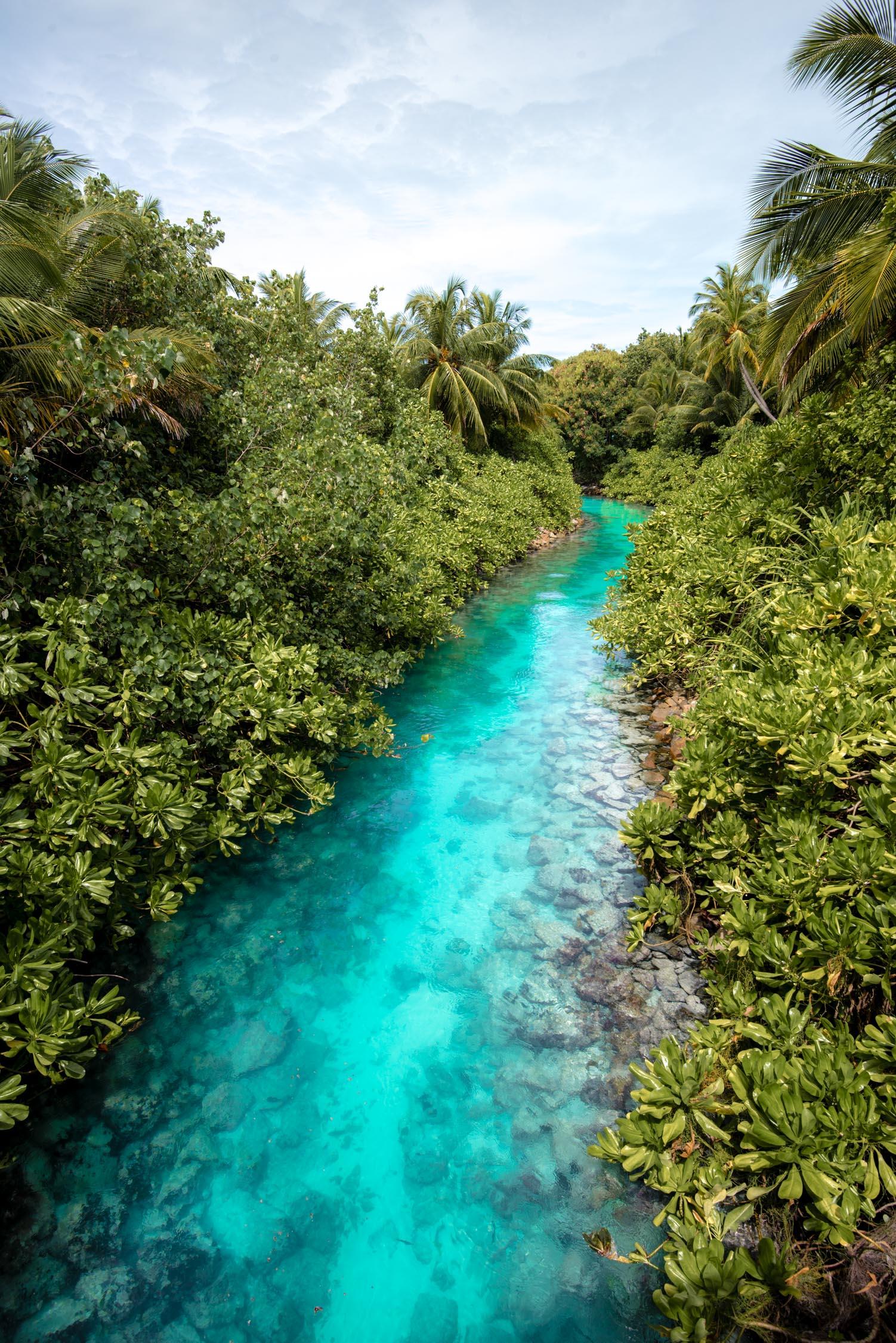 Maldives_Reethi-Rah-26-20170519.jpg