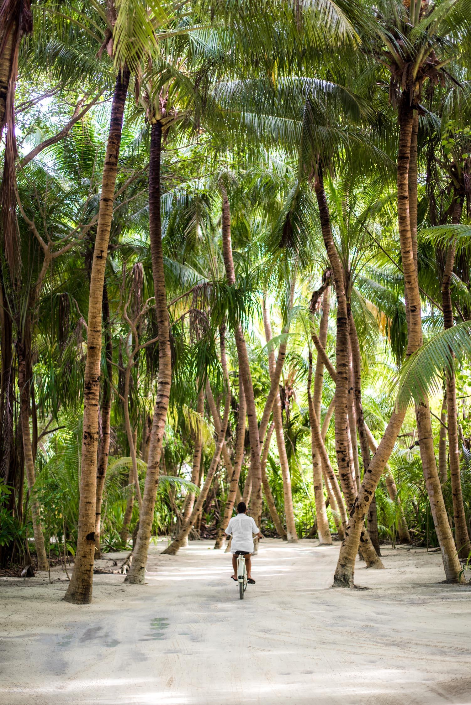 Maldives_Reethi-Rah-80-20170519.jpg