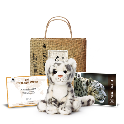 snow-leopard-adoption-kit.png