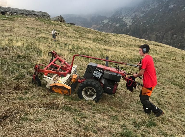 15.10.18 Alpe Mognora falcio erba -